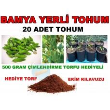 Tohum - Yerli Bamya Tohumu Saksı veya Bahçe 20 Adet