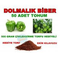Tohum - Dolmalık Biber Tohumu 50 Adet