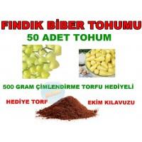 Tohum - Fındık Biber Tohumu 50 Adet