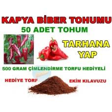 Tohum - Kapya Tatlı Biber Tohumu 50 Adet