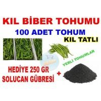 Tohum - Tatlı Kıl Biber Tohumu 100 Adet Hediyeli