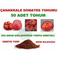Tohum - 50 Adet Çanakkale Domates Tohumu Torf Hediyeli