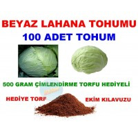 Tohum - Lahana Beyaz Tohumu 100 Adet Tohum