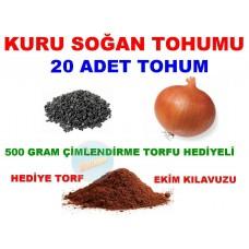 Tohum - Kuru Sogan Tohumu 20 Adet Tohum