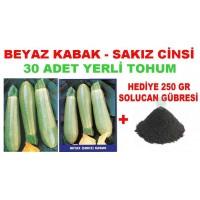 Tohum - Beyaz Sakız Kabak Tohumu  30 Adet