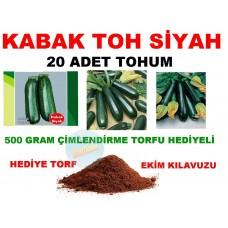 Tohum - Siyah Kabak Tohum 20 Adet