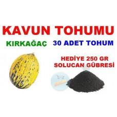 Tohum - Kavun Tohumu Kırkağaç Cinsi 30 Adet