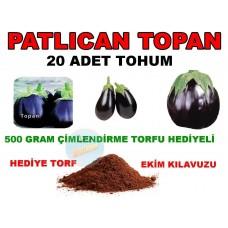 Tohum - Topan Top Patlıcan Tohumu  20 Adet