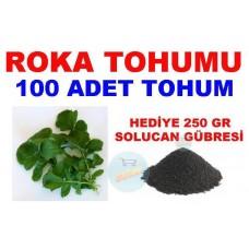 Tohum - Roka Tohumu Yerli 100 Adet
