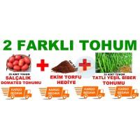 Tohum Çeşidi - 2 Li Set Salçalık Domates ve Tatlı Yeşil Biber Tohum Seti