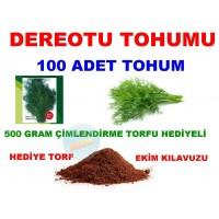 Tohum - Dereotu Tohumu 100 Adet Tohum
