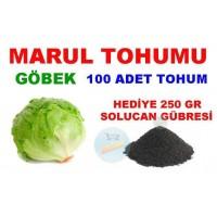 Tohum - Göbek Marul Tohumu 100 Adet