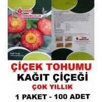 Çiçek Tohumu Kagıt Çiçeği Kagit 1 Paket 100 Adet Tohum Satışı