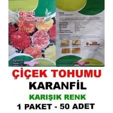 Çiçek Tohumu Karanfil Çiçeği  1 Paket 50 Adet Satışı