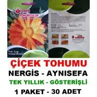 Çiçek Tohumu Nergis Çiçeği 1 Paket 30 Adet Tohum Aynısefa Satışı