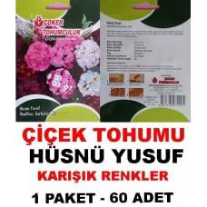 Çiçek Tohumu Hüsnü Yusuf 1 Paket 60 Adet