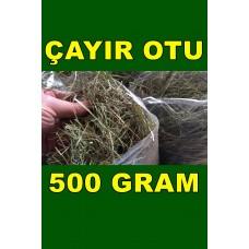Çayır Otu - Kemirgen Otu Tavşan Guinepig 500 Gram
