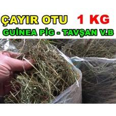 Çayır Otu - Kemirgen Otu Tavşan Guinepig 1 KG