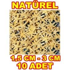 Minik Deniz Yıldızı Naturel 1.5-3 cm - 10 Adet