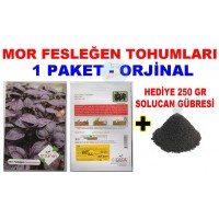 Cicek Tohumlari Mor Fesleğen 1 Paket