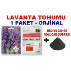 Cicek Tohumlari Lavanta 1 Paket